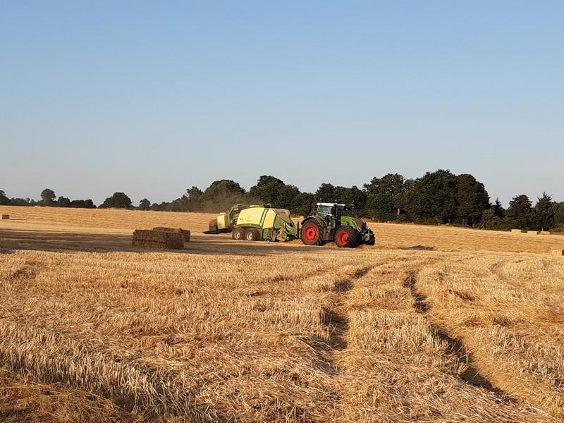 Travaux agricoles - Moisson