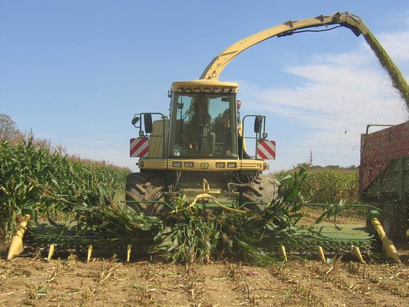 Ensilage maïs Krone Bigx650